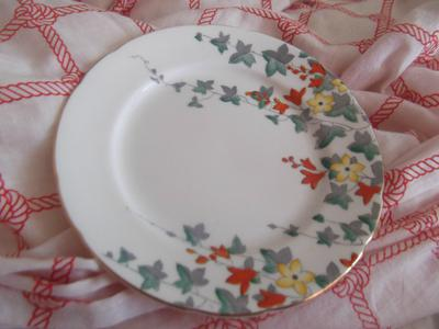 The design on the plate. I'm surprised I haven't found another.