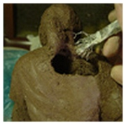 hollowing a clay sculpture