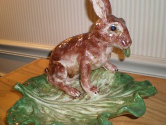 Rabbit on cabbage leaf from Bassano region of Italy